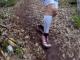 VM i ultraløb
